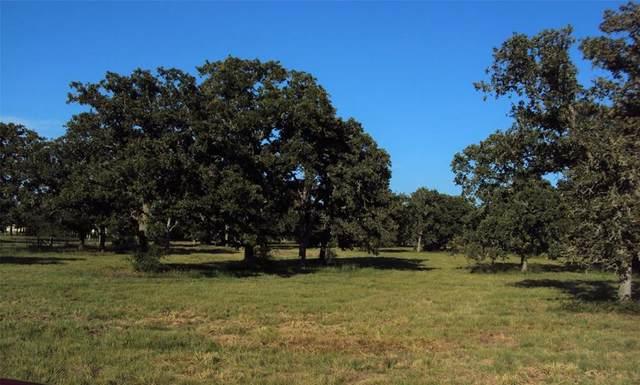 TBD Blacksmith Farm Lane, Weimar, TX 78962 (MLS #61990891) :: Guevara Backman