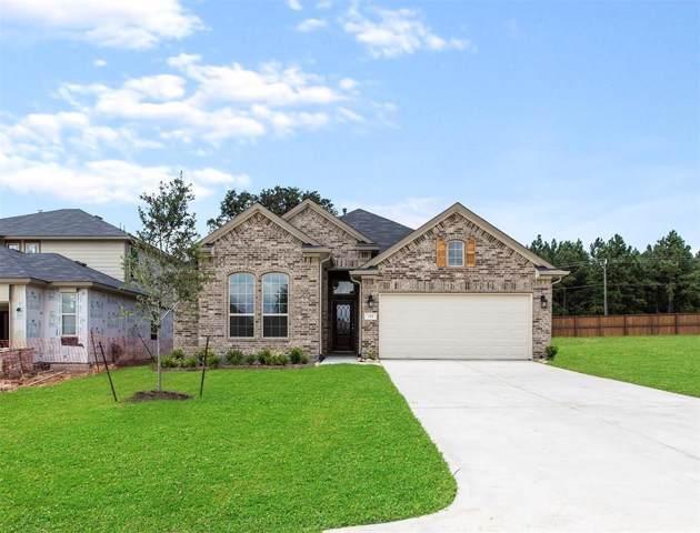 423 Terra Vista Circle, Montgomery, TX 77356 (MLS #62015616) :: Ellison Real Estate Team