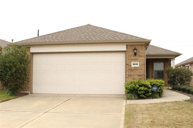3031 Dandelion Drive, Richmond, TX 77469 (MLS #62072212) :: The Bly Team