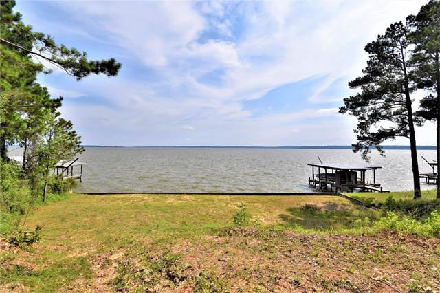 TBD Indian Hill Blvd, Livingston, TX 77351 (MLS #62096619) :: The SOLD by George Team