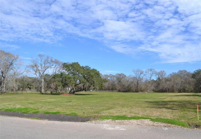 0 Country Rd / Cr 609A, Angleton, TX 77515 (MLS #6209948) :: The Sansone Group
