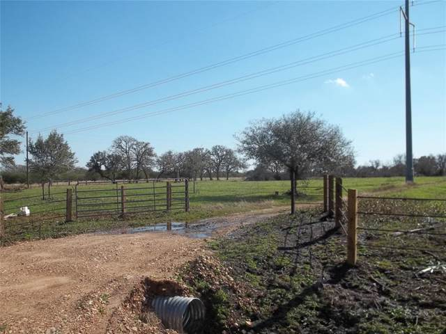 1168 Cr 206, Weimar, TX 78962 (MLS #62147544) :: The SOLD by George Team