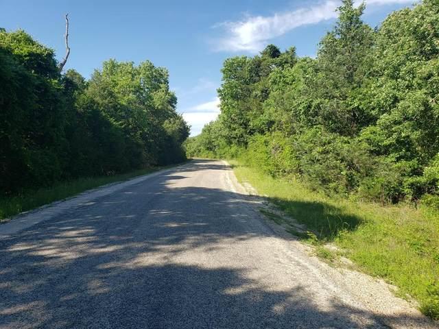 0000 Peach Creeek Road, Waelder, TX 78959 (MLS #62153354) :: The Freund Group