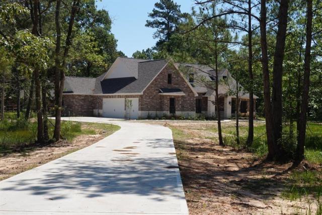28036 Chuckwagon Trail, Magnolia, TX 77355 (MLS #62184620) :: The SOLD by George Team