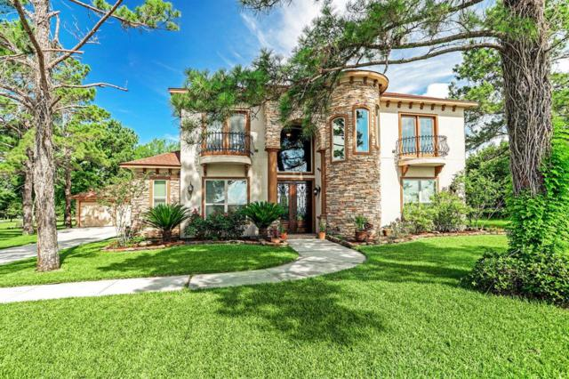 10881 Dauphine Street, Willis, TX 77318 (MLS #6231265) :: The Home Branch