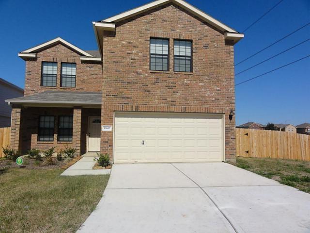 19602 Green Oasis Court, Katy, TX 77449 (MLS #62314133) :: The Heyl Group at Keller Williams