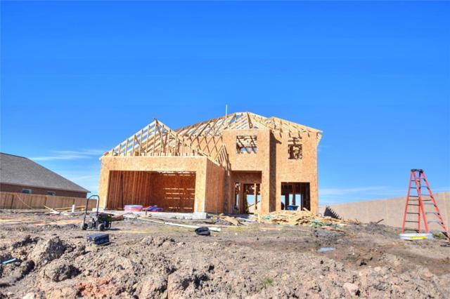 2415 Agassiz, Iowa Colony, TX 77583 (MLS #62343320) :: Texas Home Shop Realty