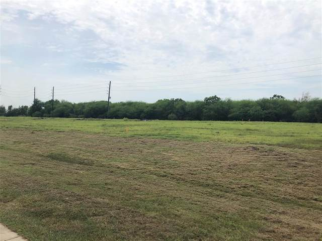 1030 Royal Lakes Manor Blvd Boulevard, Richmond, TX 77469 (MLS #62345162) :: Michele Harmon Team
