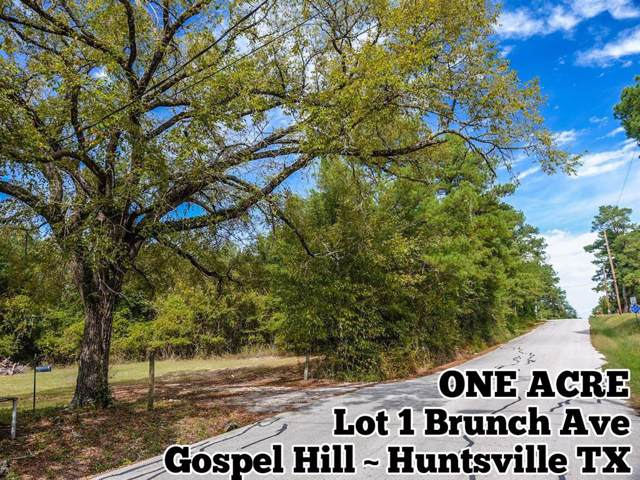Lot 1 Brunch Avenue, Huntsville, TX 77320 (MLS #62354539) :: The SOLD by George Team