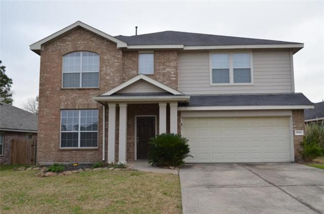 18902 Cluster Oaks Drive, Magnolia, TX 77355 (MLS #62368512) :: The SOLD by George Team