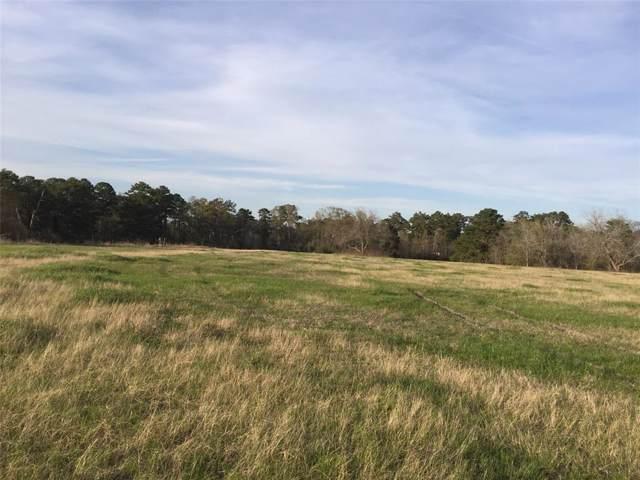 13796 Longstreet Road Road, Willis, TX 77318 (MLS #6239814) :: Ellison Real Estate Team