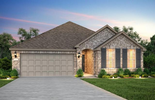24927 Clearwater Willow Trace, Richmond, TX 77406 (MLS #62430638) :: Christy Buck Team