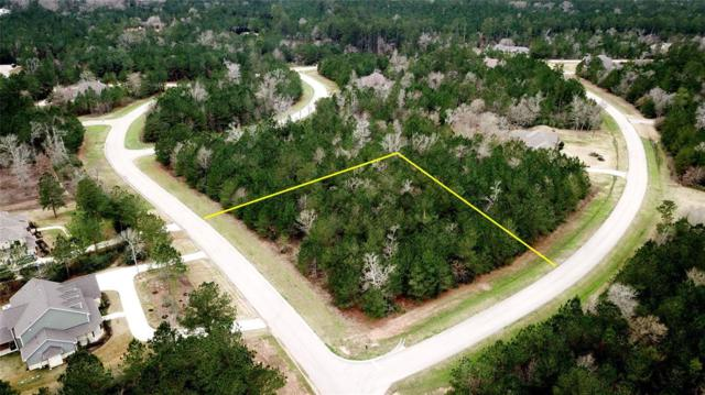 26130 E Crown Crossing Drive, Montgomery, TX 77316 (MLS #62430840) :: Fairwater Westmont Real Estate