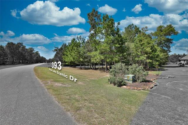 393 Ridge Lake Scenic Drive, Montgomery, TX 77316 (MLS #62476937) :: Green Residential