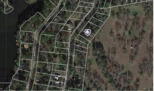 Lot 20 Skylane Drive, Montgomery, TX 77316 (MLS #62486620) :: My BCS Home Real Estate Group