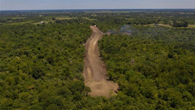 14 Woodland Farms Lane, Chappell Hill, TX 77426 (MLS #62583698) :: Giorgi Real Estate Group