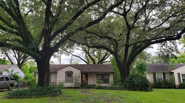 7119 Raton Street, Houston, TX 77055 (MLS #62652333) :: The SOLD by George Team