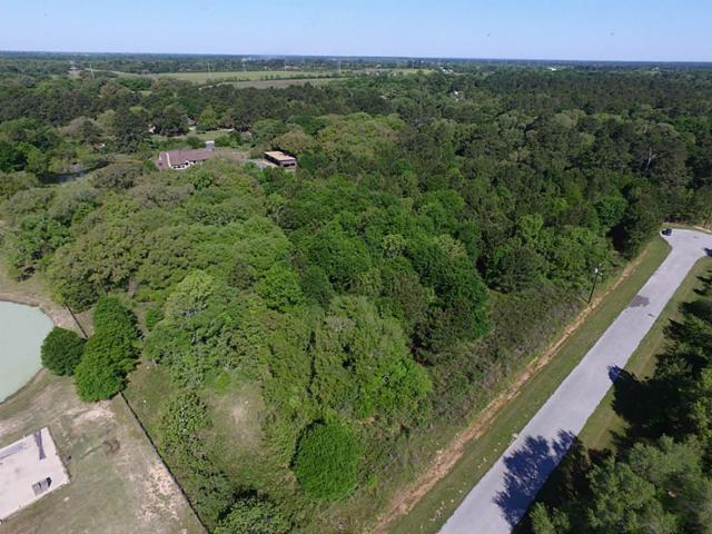 22051 Bryantwood Court, Hockley, TX 77447 (MLS #62654806) :: Texas Home Shop Realty
