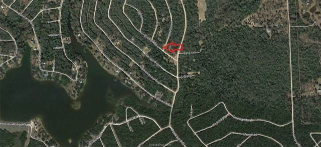 Lot 20 Cheyenne Street, Hilltop Lakes, TX 77871 (MLS #6276007) :: The Freund Group
