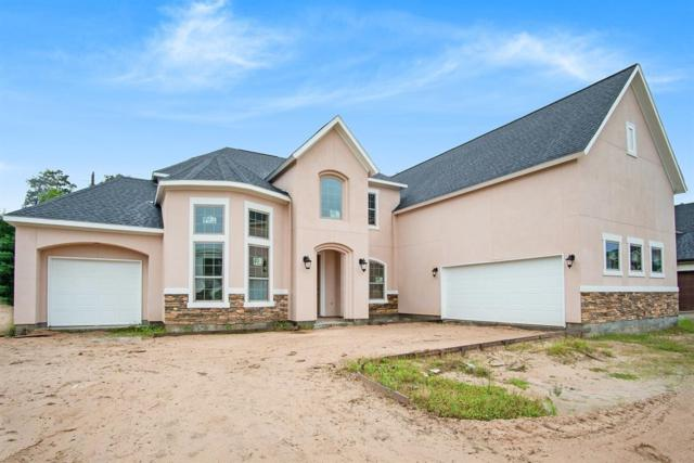 13719 W Dominion Falls Lane, Humble, TX 77396 (MLS #62796554) :: The SOLD by George Team
