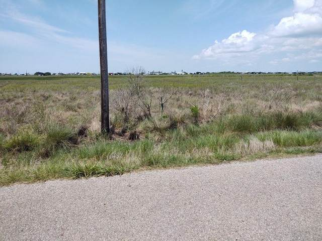 1645 County Road 299 Heron, Sargent, TX 77414 (MLS #62804803) :: The Freund Group