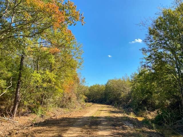 000 Gates Road, Devers, TX 77533 (MLS #62806789) :: Michele Harmon Team