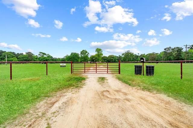 11075 S Williams Road, Conroe, TX 77303 (MLS #6288326) :: Caskey Realty