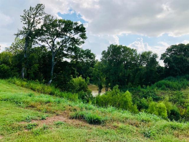 4741 Riverbluff Court, Fulshear, TX 77441 (MLS #62888352) :: Texas Home Shop Realty