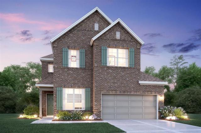 2542 Amethyst Isle, Missouri City, TX 77459 (MLS #62903389) :: Texas Home Shop Realty