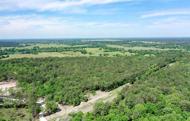 TBD Hwy 75, Huntsville, TX 77320 (MLS #6301113) :: Michele Harmon Team