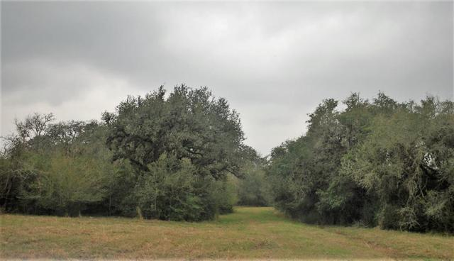 0 Green Meadow Lane At Simmons Oakridge Rd, Columbus, TX 78934 (MLS #63106509) :: Texas Home Shop Realty