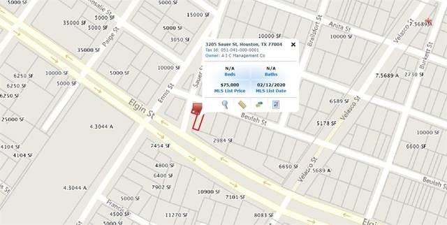3205 Sauer Street, Houston, TX 77004 (MLS #63113952) :: The Parodi Team at Realty Associates