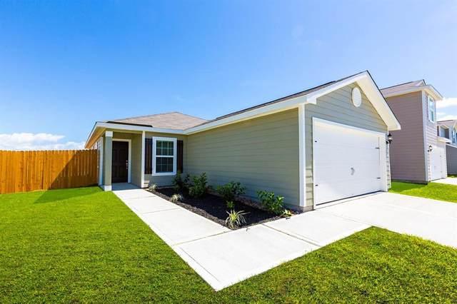 5610 Sapphire Lagoon Road, Cove, TX 77523 (MLS #63192727) :: The Sansone Group