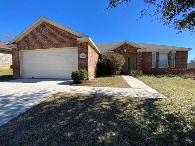 12686 Lake Conroe Hills Drive, Willis, TX 77318 (MLS #63196886) :: Caskey Realty