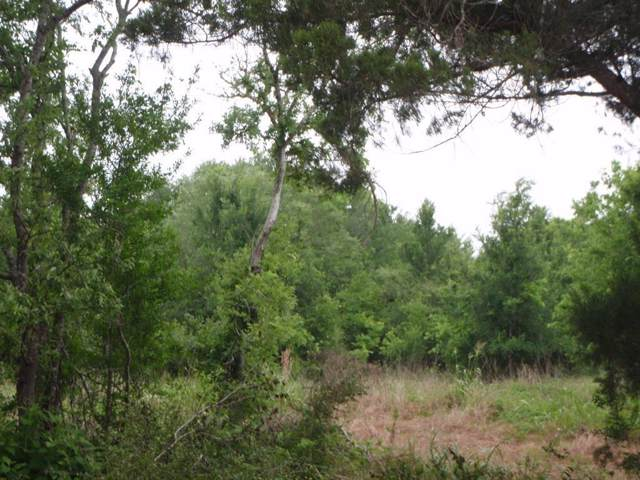 4008,4009 Pr 652, Sargent, TX 77414 (MLS #63309346) :: Ellison Real Estate Team