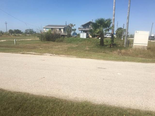 1423 Anderson Ave, Port Bolivar, TX 77650 (MLS #63344753) :: The Wendy Sherman Team