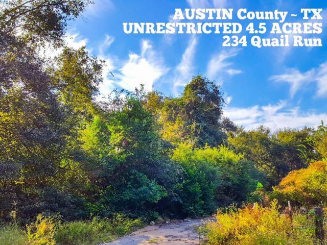 234 Quail Run, Bellville, TX 77418 (MLS #63362051) :: Magnolia Realty