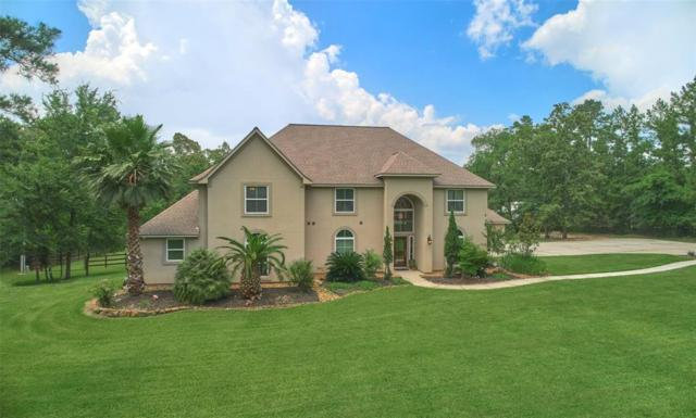 38122 Wind Song Trace, Magnolia, TX 77355 (MLS #63383918) :: The Sansone Group