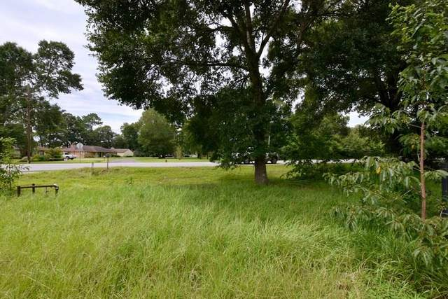 2902 Hwy 146, Liberty, TX 77575 (MLS #63386814) :: The SOLD by George Team