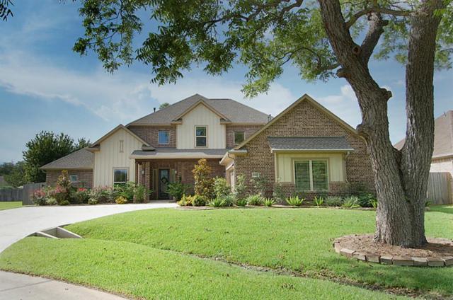4423 Warington Street, Fulshear, TX 77441 (MLS #63448448) :: Krueger Real Estate