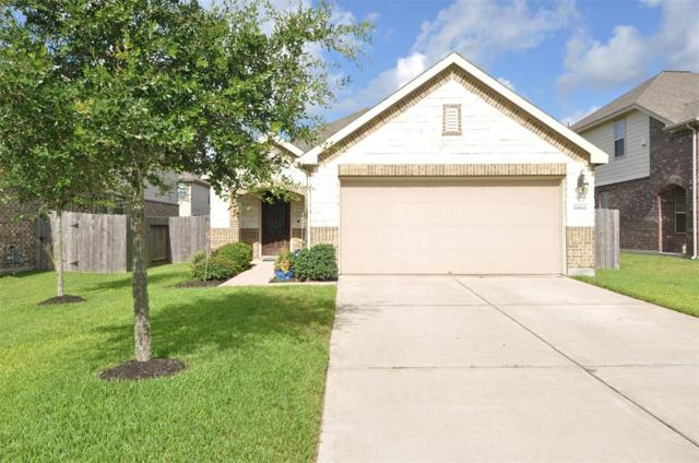 6866 Juniper Arbor Lane, Dickinson, TX 77539 (MLS #63460291) :: Texas Home Shop Realty