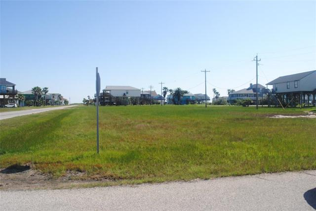 lot 12 Jean Lafitte Drive, Freeport, TX 77541 (MLS #63515735) :: Texas Home Shop Realty