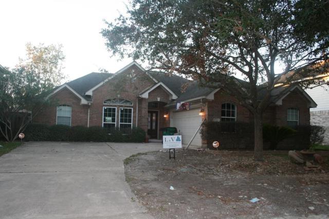 6314 Piedra Negras Court, Katy, TX 77450 (MLS #63519342) :: Team Sansone