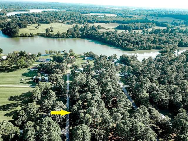 LOT 7 & 8 Hermitage Street, Trinity, TX 75862 (MLS #6356091) :: Green Residential