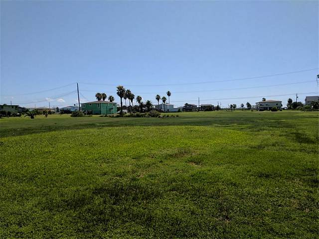 Lot 74 3rd Street, Galveston, TX 77554 (MLS #63713356) :: Christy Buck Team