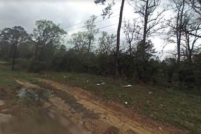 0 Hill Lot 38 Lane, Coldspring, TX 77331 (MLS #6373739) :: The SOLD by George Team