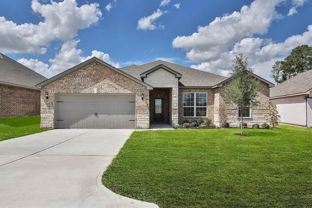 22102 Fairway Field Drive, Hockley, TX 77447 (MLS #63742200) :: The SOLD by George Team