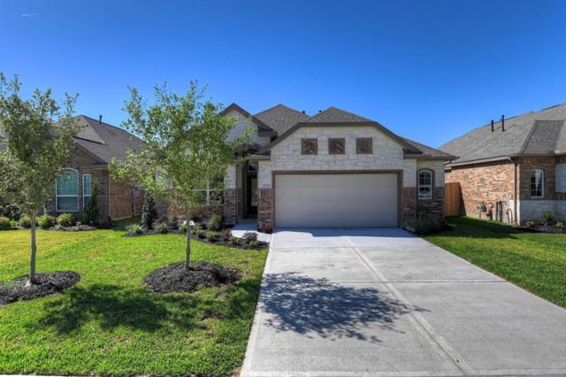 21334 Shadbush Avenue, Porter, TX 77365 (MLS #63781269) :: Texas Home Shop Realty