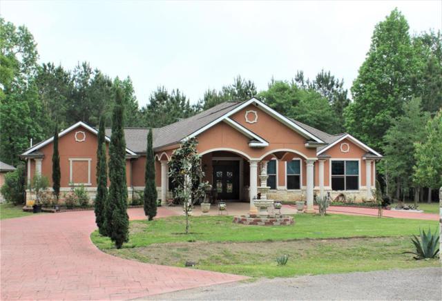 14603 Dawn Mist Court, Magnolia, TX 77354 (MLS #63826018) :: Texas Home Shop Realty