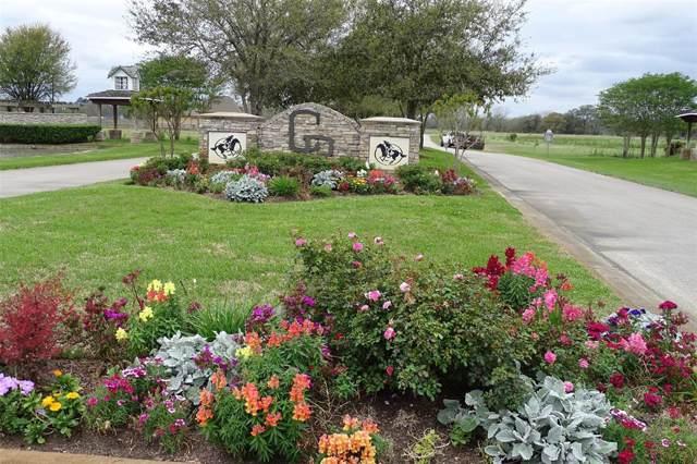 23010 Pittman Drive, Angleton, TX 77515 (MLS #63886071) :: Texas Home Shop Realty